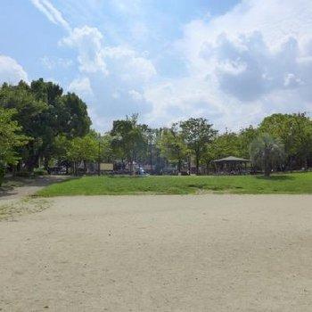 近くに公園もあって、落ち着いた環境