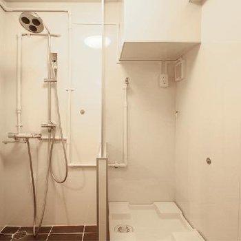 右に洗濯機、左にシャワー