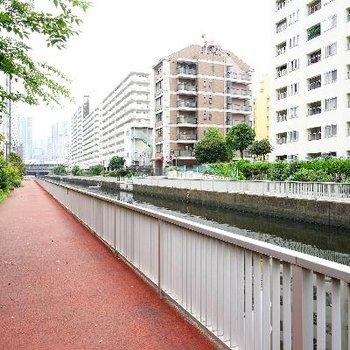 建物の目の前は川と遊歩道♪