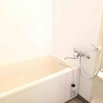 お風呂も綺麗で大きめ!※掲載写真は前回募集時のものです。