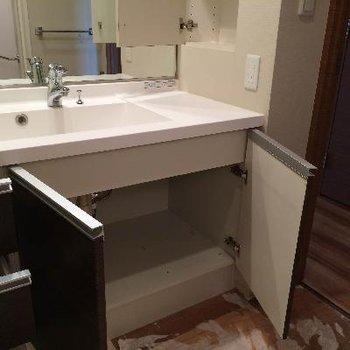 洗面台下の収納もばっちり