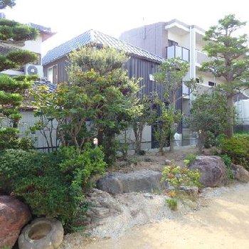 階下には日本風の庭園風景が。