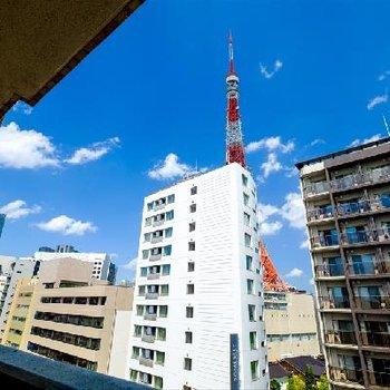 東京タワー。是非夜も見てみたいですね