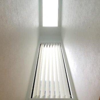 天窓。光が差し込みます
