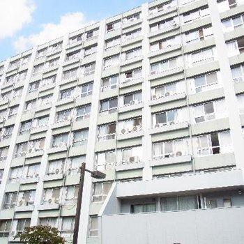 11階建てのおおきなマンションです!