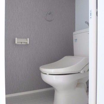 トイレはウォシュレット付き!※写真は別部屋
