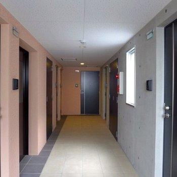 共用廊下も綺麗です