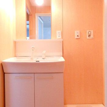 独立洗面台。壁はウッディな質感で統一