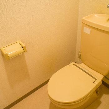 トイレの上には収納棚があります。