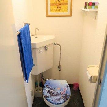 トイレも昔ながらの。
