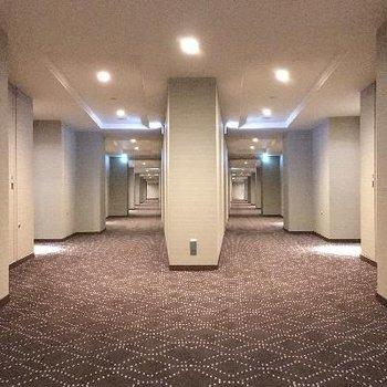端っこの部屋なのでどちらの道でもエレベーターへいけますよ!