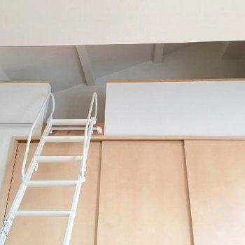 そしてロフト!はしごがあるだけで何だかわくわくしたり。