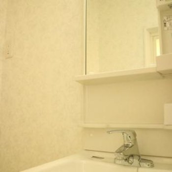 洗面台だってぴかぴかです。写真は同間取り別部屋