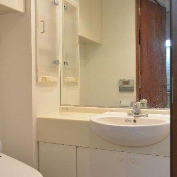 ちょっと立派すぎやしませんか洗面台※画像はクリーニング前のものです