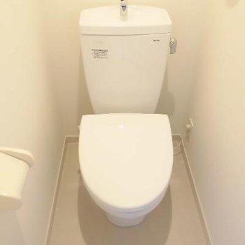 この広さでもしっかりトイレは個室です