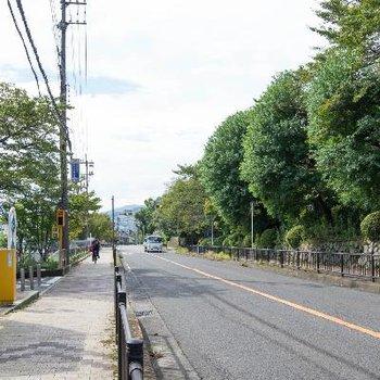 駅から続くバス通りは緑あふれてます