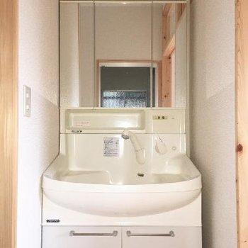 洗面台はピカピカ。シャンプードレッサーで設備も抜群です!
