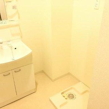 洗面台と洗濯機置き場はセットでした!