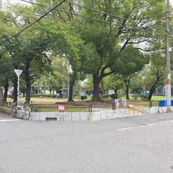 徒歩2分で遊具も多い公園がありました♪