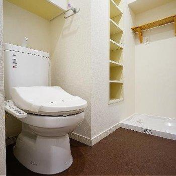 トイレは新品ウォシュレットつき!