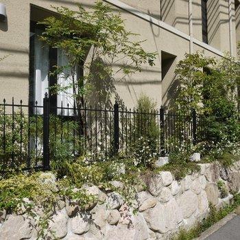 緑と石垣がおしゃれ。