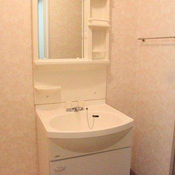 収納も充実した機能的な洗面台です※2階別部屋同間取りの写真です。