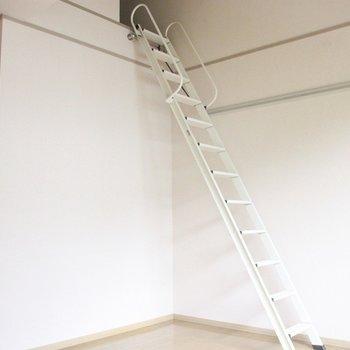 この階段がロフトへと導きます※2階別部屋同間取りの写真です。