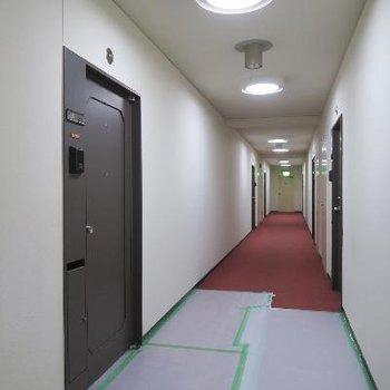 廊下は内廊下、赤絨毯!※写真は工事中