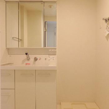 独立洗面台。幅の広いタイプです