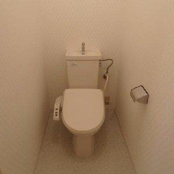スペースが広めのトイレです。