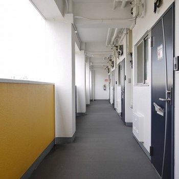 広めの共有廊下。