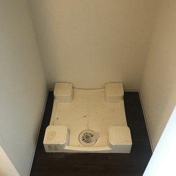 洗濯機が隠れてます