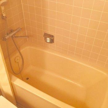 シャワーカーテンで仕切りましょう!※クリーニング前の写真です