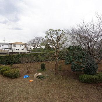 眺望は敷地内の緑が◎