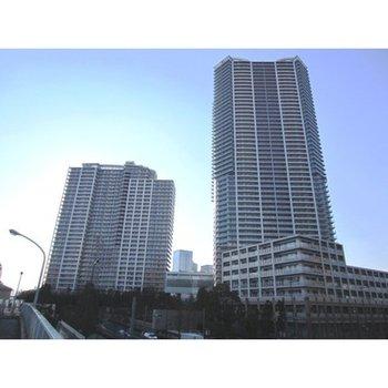 アーバンドック パークシティ豊洲 タワーB