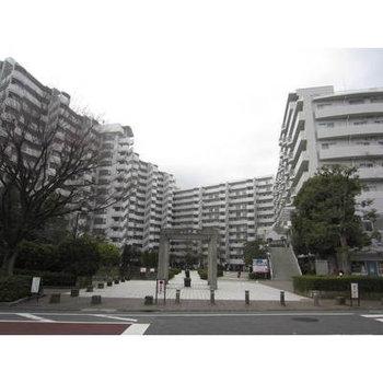 武蔵新田10分マンション