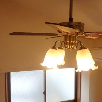 照明が可愛いですね!