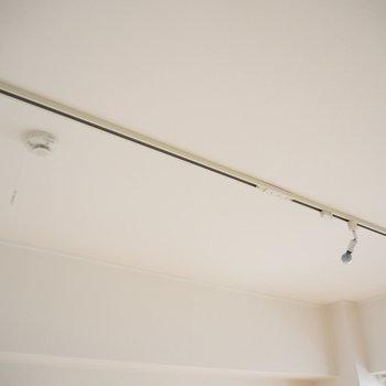 天井にはライティングレールが付いています。