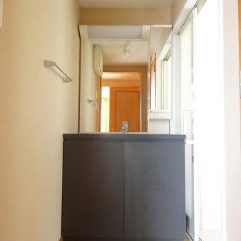 洗面台はどっしり※写真は2階の反転間取り別部屋のものです