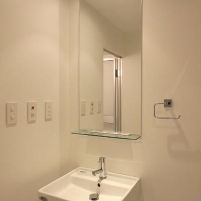 この鏡、写真で見るより大きいんです!