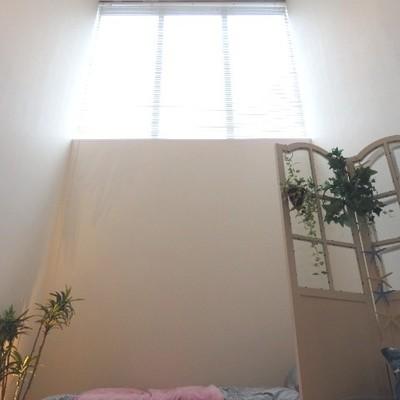 この天井、とにかく高い…!!
