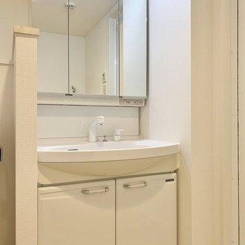 お隣さんの洗面台は広い洗面ボウルが特徴です。