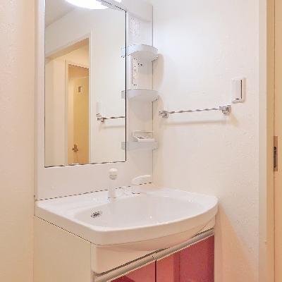 独立洗面台!隣に洗濯機を置きましょう。