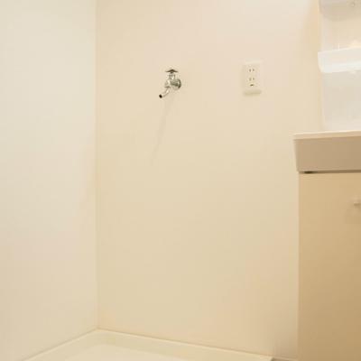 洗面台の横に洗濯機
