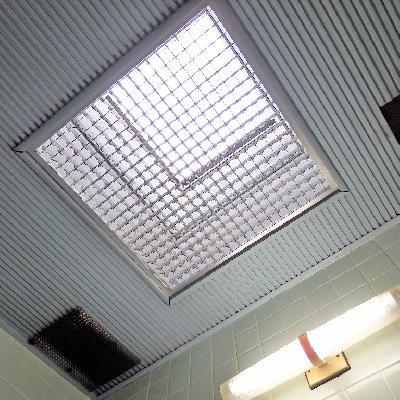 上を見上げると天窓が!! お日様の光が柔らかく照らします。