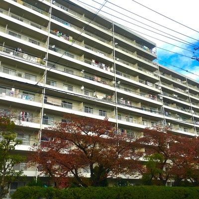 緑に囲まれたオシャレトロなマンション