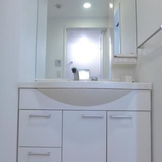 洗面台も大きく、使い勝手良さそう!※写真は別部屋