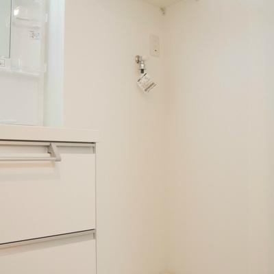 洗濯機置き場は洗面台の横に
