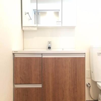 大きい洗面台、隣にトイレがあります