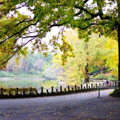 大宮公園がすぐ近く♪